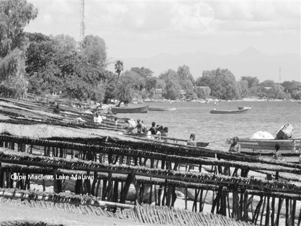 Thumbi Island, Lake Malawi