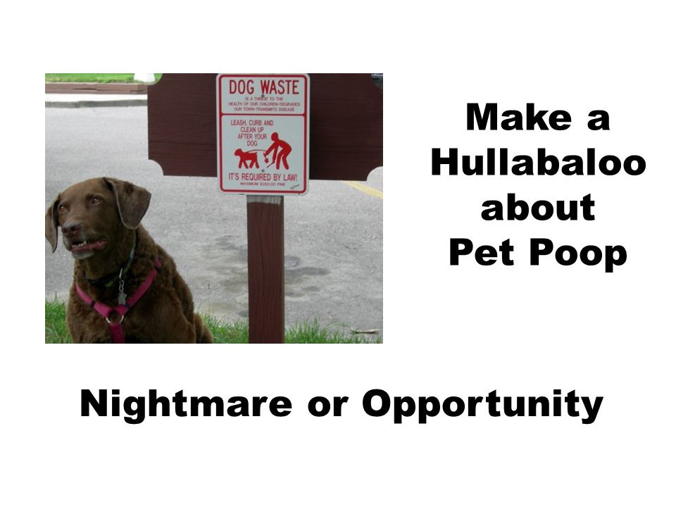 Make a Hullabaloo about Pet Poop Nightmare or Opportunity