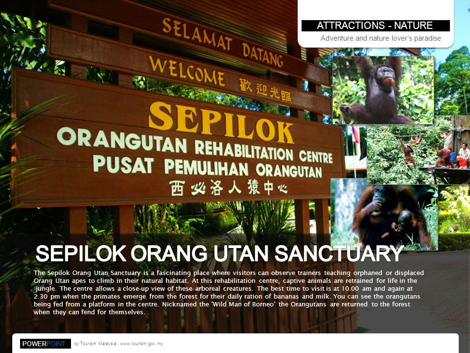 ATTRACTIONS - NATURE by Tourism Malaysia.