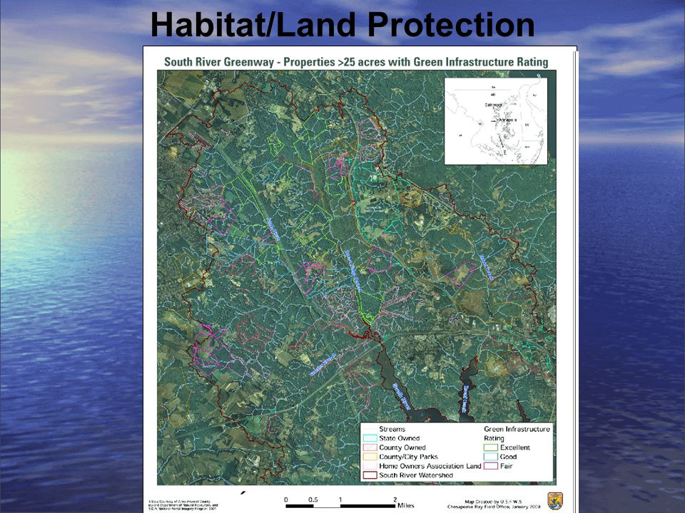 Habitat/Land Protection