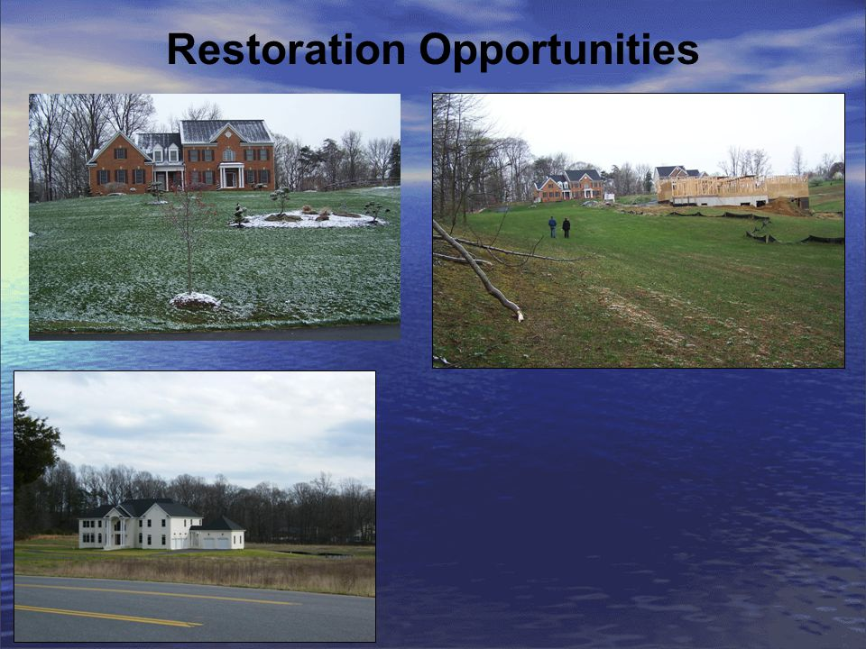 Restoration Opportunities