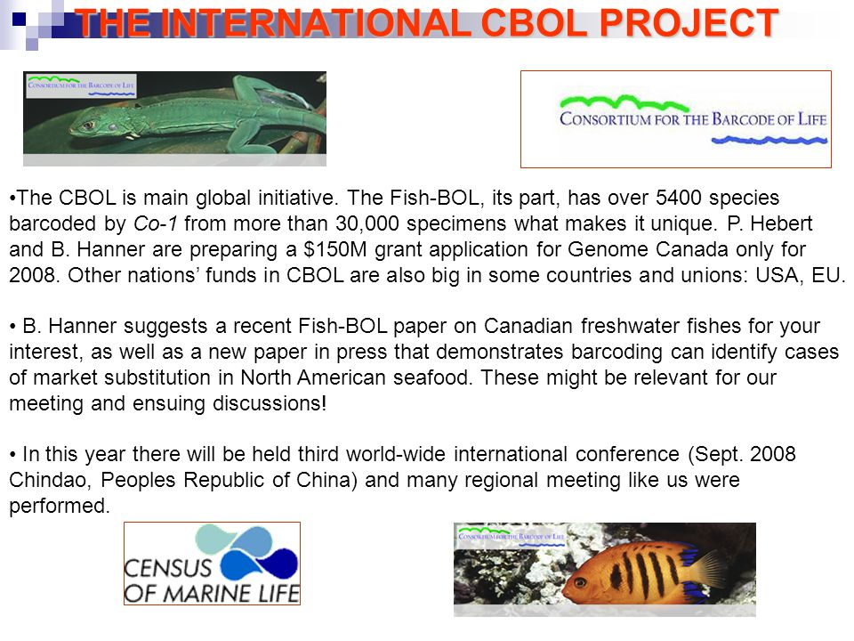 THE INTERNATIONAL CBOL PROJECT The CBOL is main global initiative.