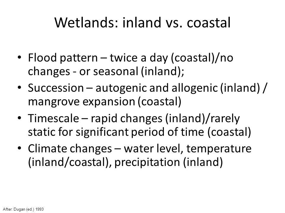 Why we need inland wetlands.