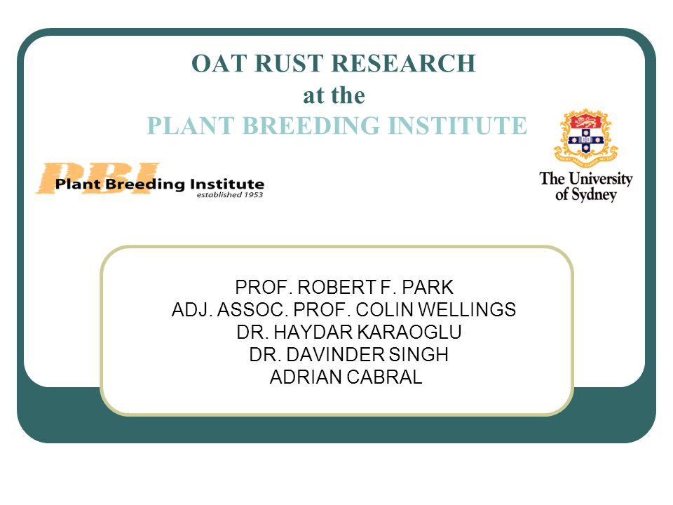 OAT RUST RESEARCH at the PLANT BREEDING INSTITUTE PROF.