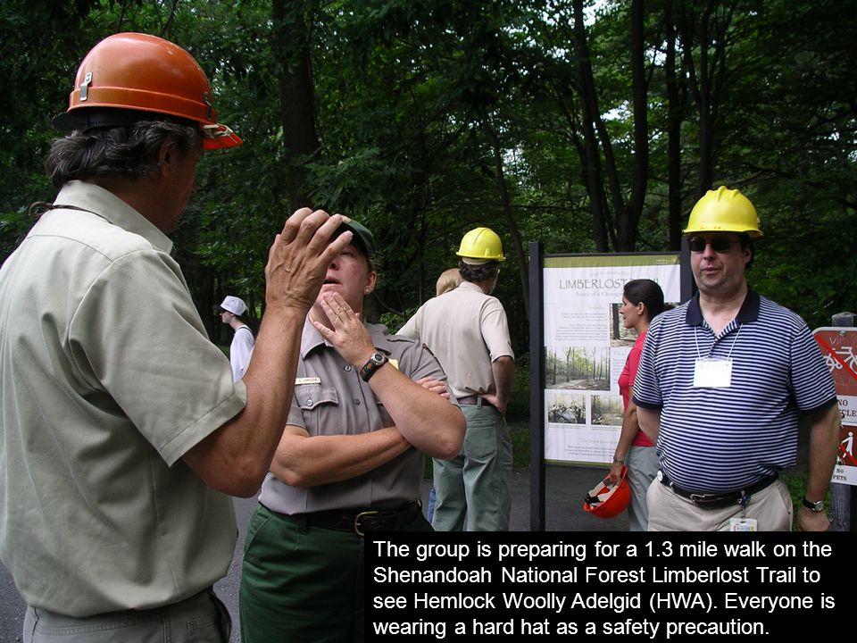 Congressional staffers, Forest Service employees, and cooperators convene to see poster displays.