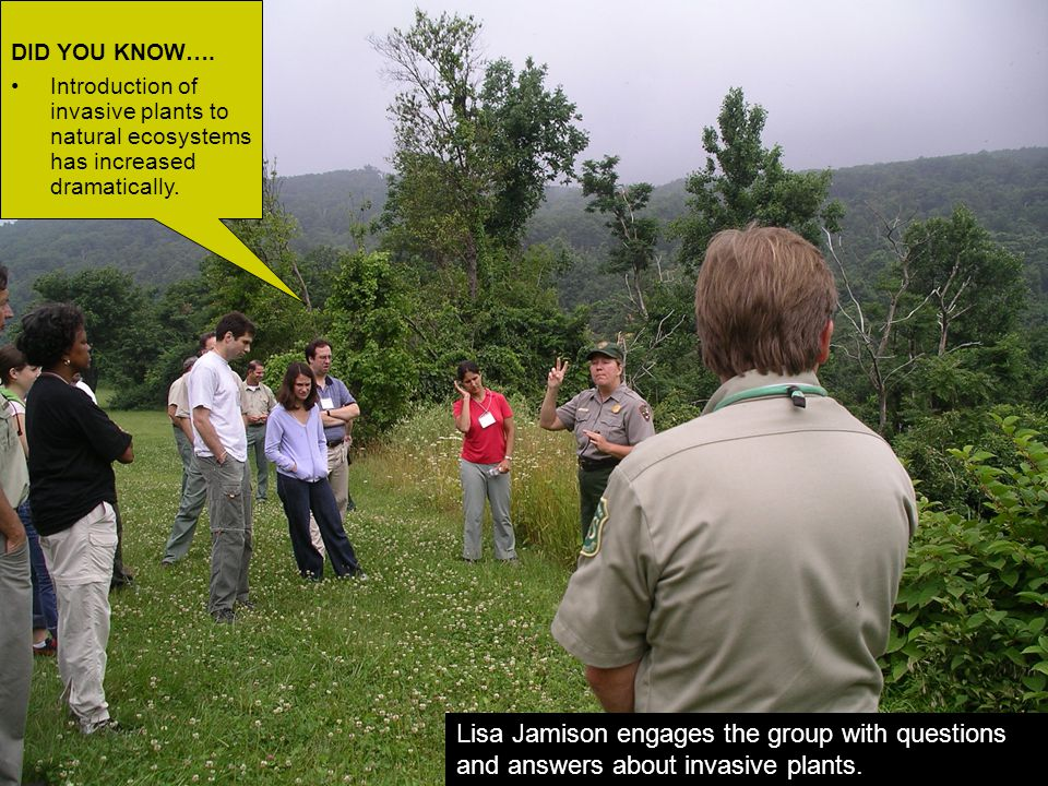 Lisa Jamison, National Park Service, is giving a lively explanation of how invasive plants such as Japanese Knotweed, Tree-of-Heaven, and Oriental Bittersweet have dominated the composition.