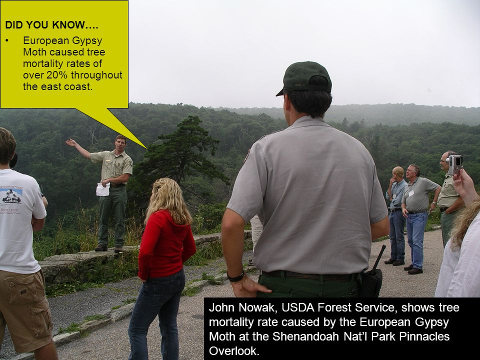 Lisa Jamison engages the group with questions and answers about invasive plants.