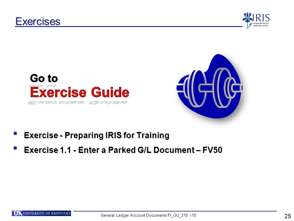 General Ledger Account Documents FI_GU_310 v10 25 Exercises Exercise - Preparing IRIS for Training Exercise - Preparing IRIS for Training Exercise 1.1