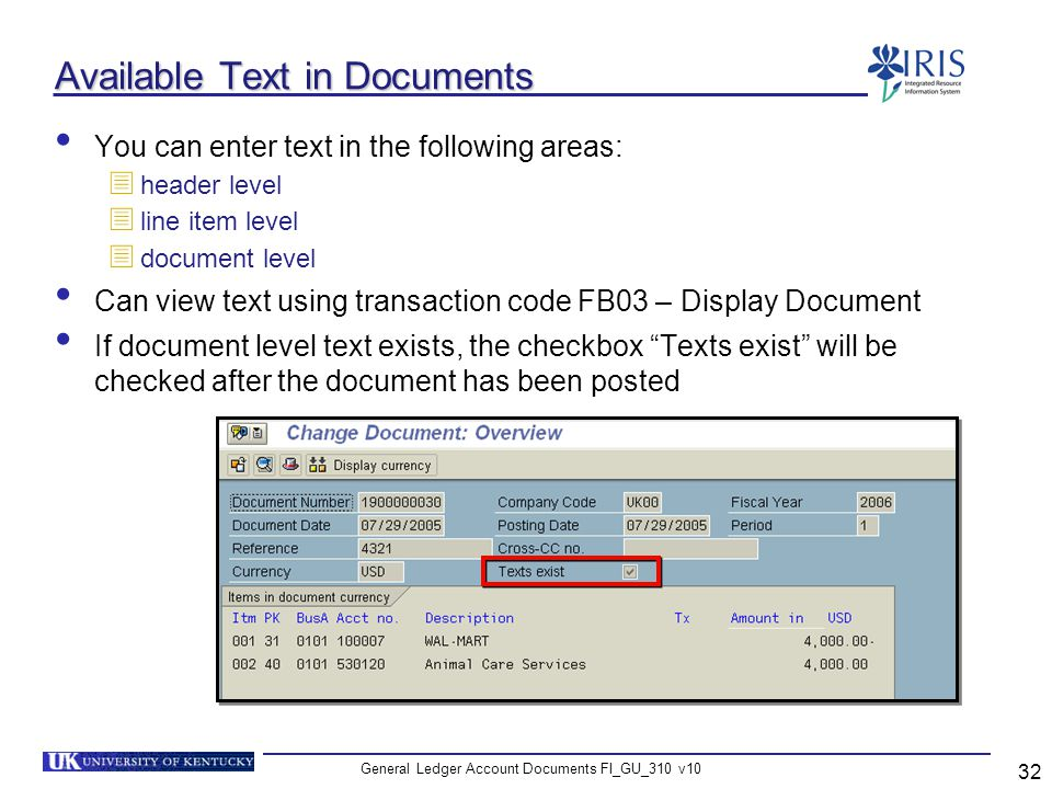 General Ledger Account Documents FI_GU_310 v10 32 Available Text in Documents You can enter text in the following areas: header level line item level