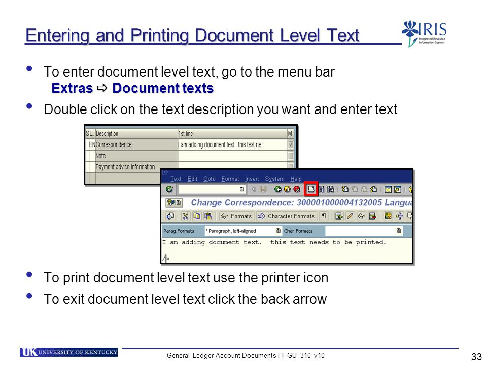 General Ledger Account Documents FI_GU_310 v10 33 Entering and Printing Document Level Text Extras Document texts To enter document level text, go to