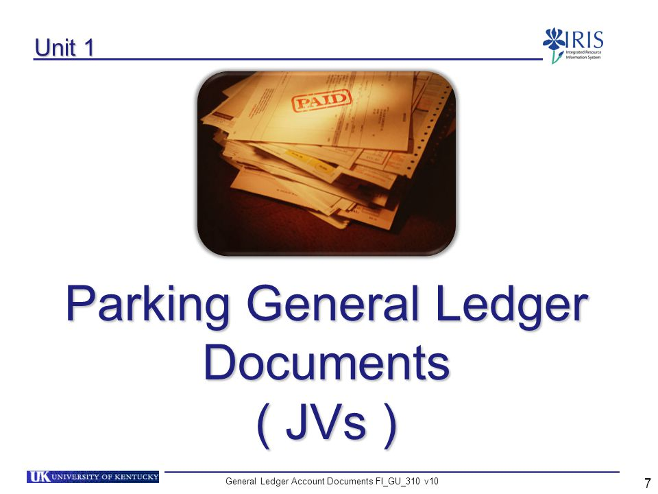 General Ledger Account Documents FI_GU_310 v10 48 Activate the Reference Field – Editing Options