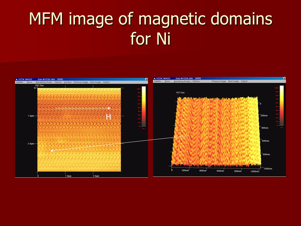 MFM image of magnetic domains for Ni H