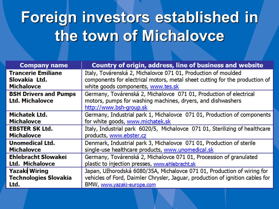 Foreign investors established in the town of Michalovce