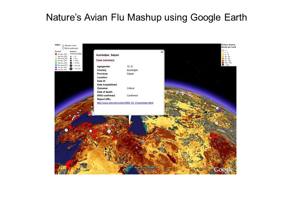 Natures Avian Flu Mashup using Google Earth