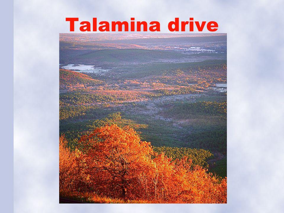 Talamina drive