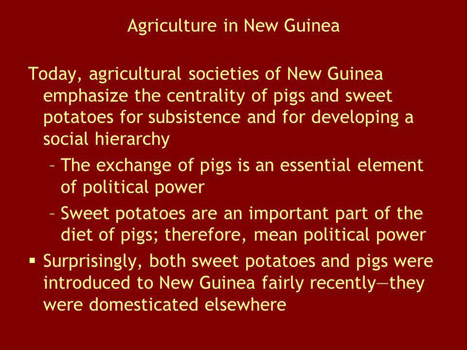 Agriculture in New Guinea Today, agricultural societies of New Guinea emphasize the centrality of pigs and sweet potatoes for subsistence and for deve