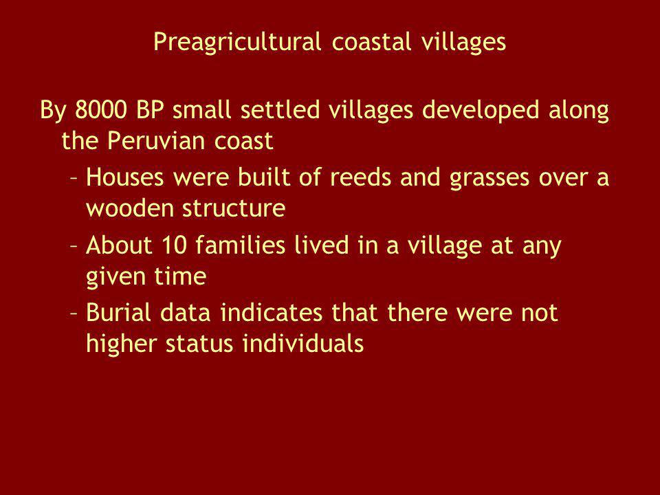 Preagricultural coastal villages By 8000 BP small settled villages developed along the Peruvian coast –Houses were built of reeds and grasses over a w