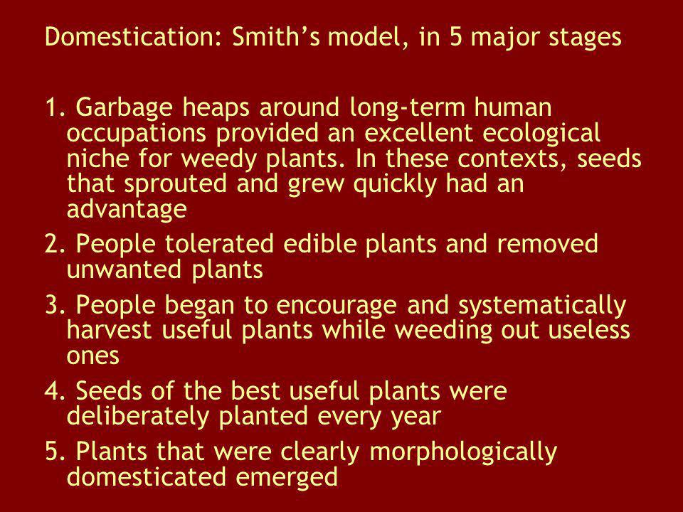 Domestication: Smiths model, in 5 major stages 1. Garbage heaps around long-term human occupations provided an excellent ecological niche for weedy pl