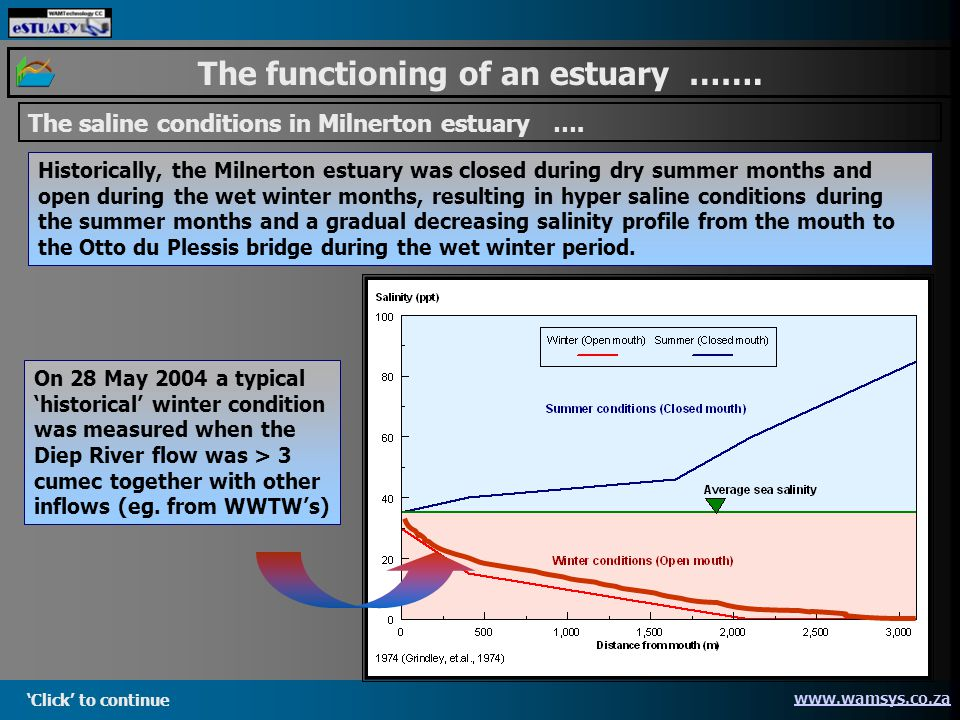 Click to continue www.wamsys.co.za The functioning of an estuary …….