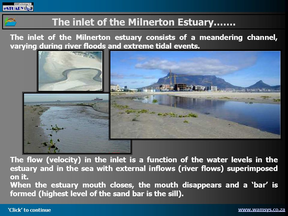 Click to continue www.wamsys.co.za The inlet of the Milnerton Estuary…….