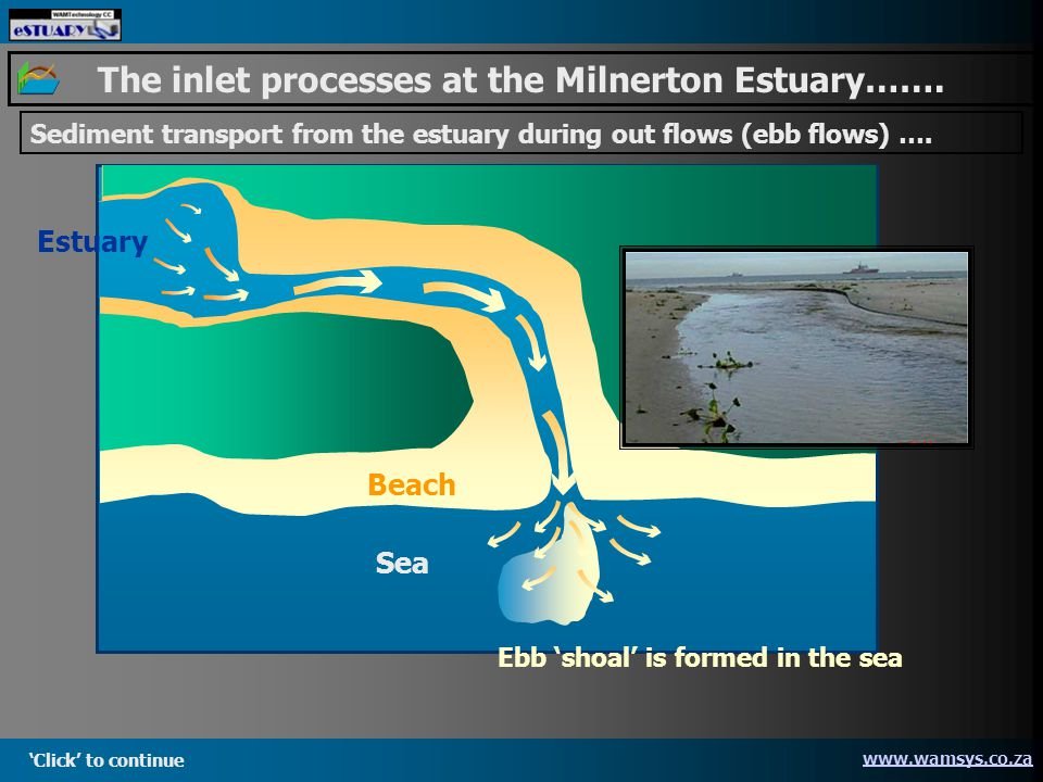 Sea Beach Estuary Click to continue   The inlet processes at the Milnerton Estuary…….