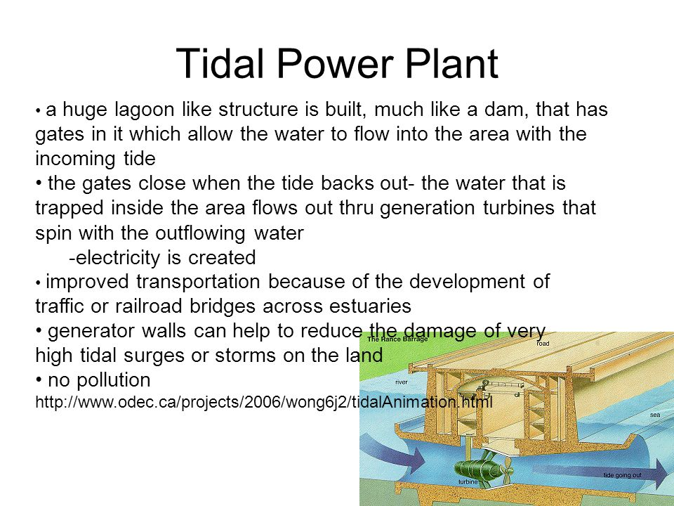 Tidal Power Plant a huge lagoon like structure is built, much like a dam, that has gates in it which allow the water to flow into the area with the incoming tide the gates close when the tide backs out- the water that is trapped inside the area flows out thru generation turbines that spin with the outflowing water -electricity is created improved transportation because of the development of traffic or railroad bridges across estuaries generator walls can help to reduce the damage of very high tidal surges or storms on the land no pollution http://www.odec.ca/projects/2006/wong6j2/tidalAnimation.html