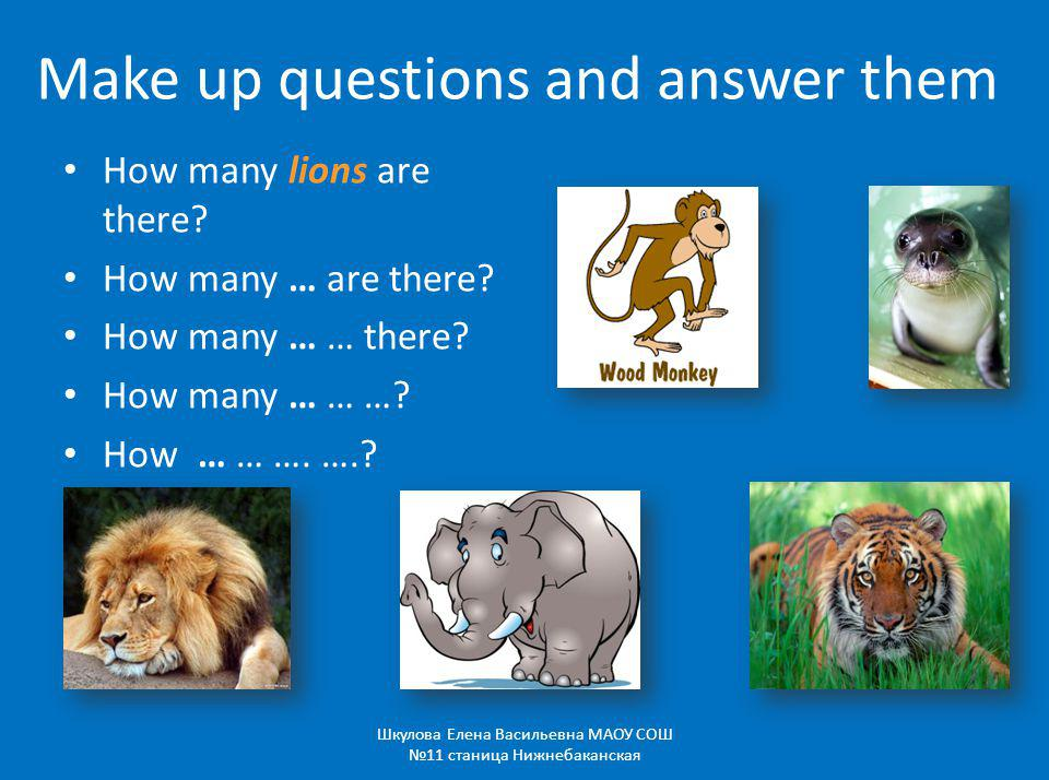 Make up questions and answer them How many lions are there.