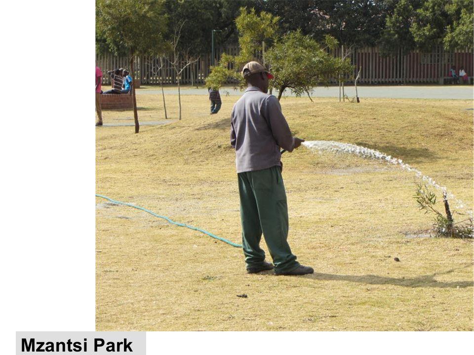 Mzantsi Park