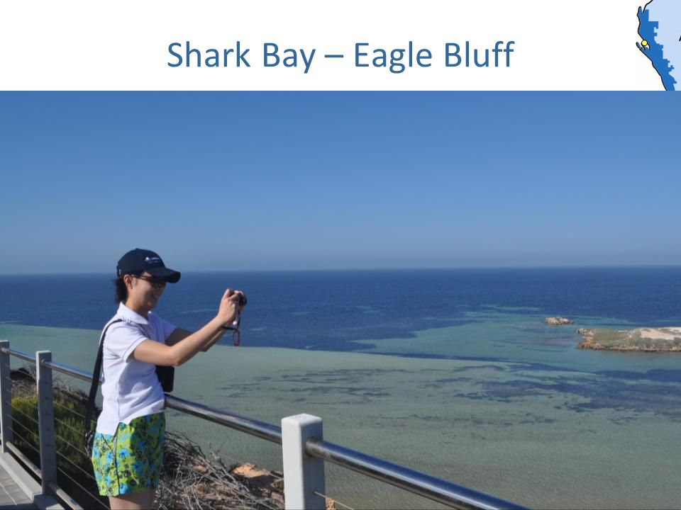 Shark Bay – Eagle Bluff