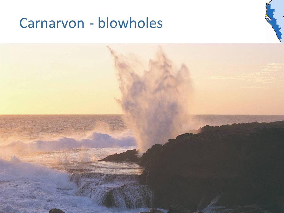Carnarvon - blowholes
