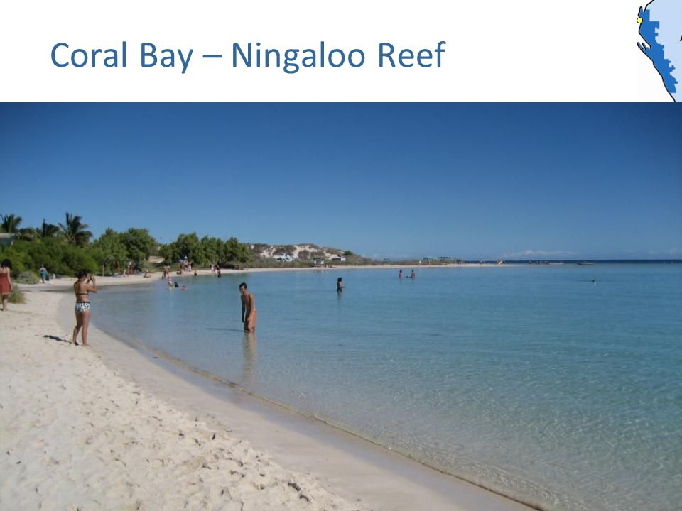 Coral Bay – Ningaloo Reef