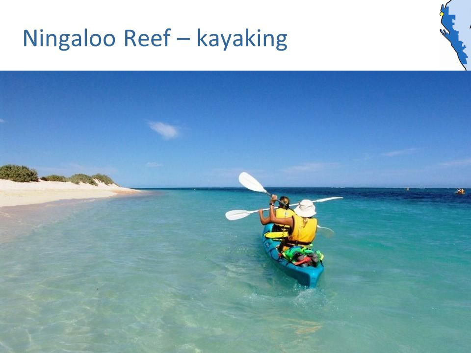 Ningaloo Reef – kayaking