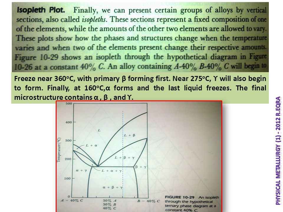 Freeze near 360 o C, with primary β forming first. Near 275 o C, ϒ will also begin to form. Finally, at 160 o C,α forms and the last liquid freezes. T