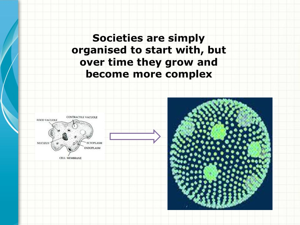 Societies are simply organised to start with, but over time they grow and become more complex
