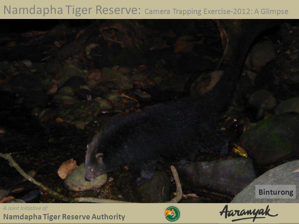 Binturong Namdapha Tiger Reserve: Camera Trapping Exercise-2012: A Glimpse A Joint Initiative of Namdapha Tiger Reserve Authority