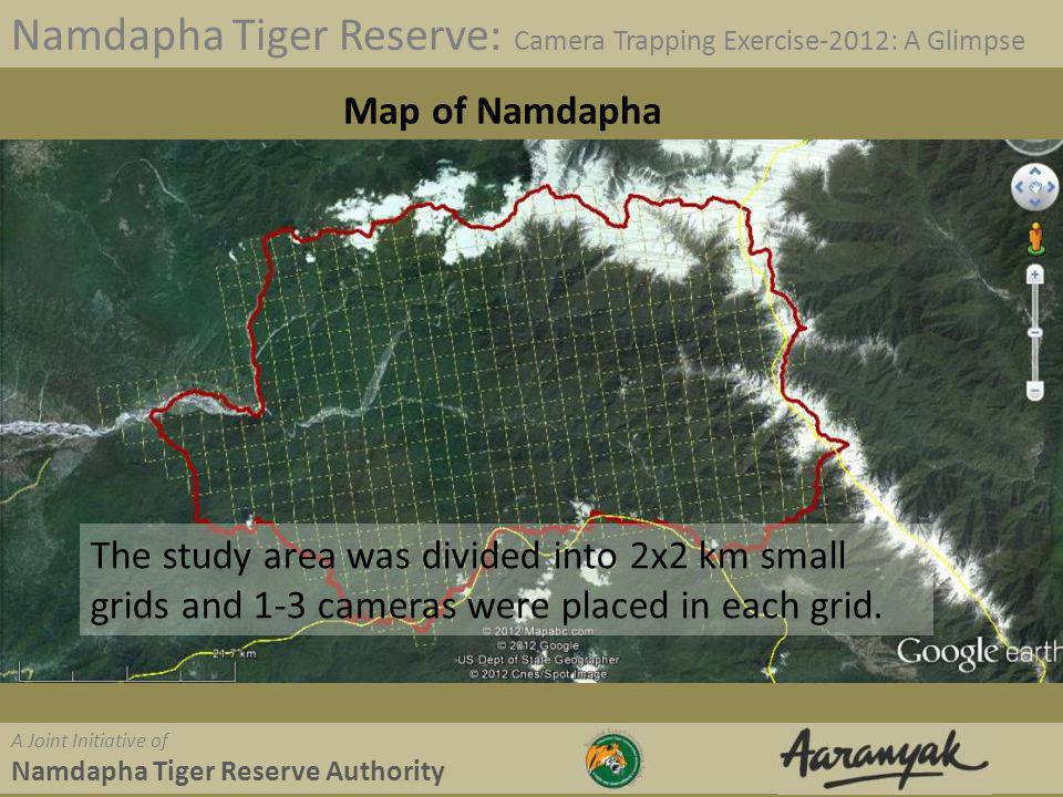 Palm Civet Namdapha Tiger Reserve: Camera Trapping Exercise-2012: A Glimpse A Joint Initiative of Namdapha Tiger Reserve Authority