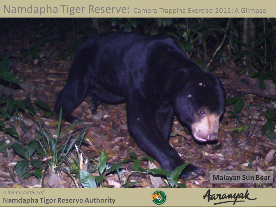 Malayan Sun Bear Namdapha Tiger Reserve: Camera Trapping Exercise-2012: A Glimpse A Joint Initiative of Namdapha Tiger Reserve Authority