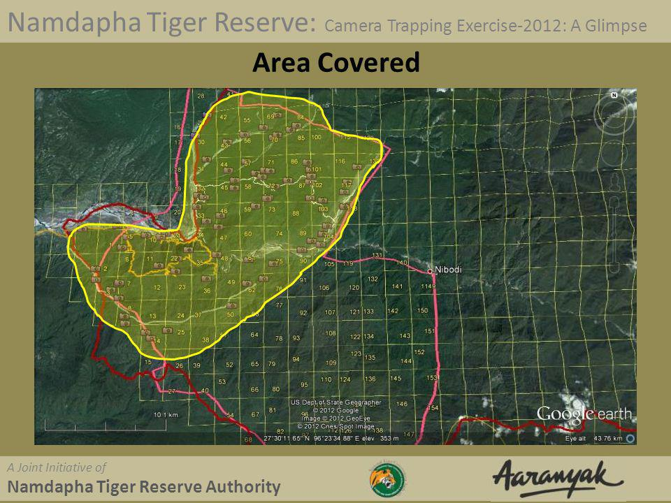 Namdapha Tiger Reserve: Camera Trapping Exercise-2012: A Glimpse A Joint Initiative of Namdapha Tiger Reserve Authority Resources Used 4 Base Camps At Deban, Happy Valley, Hornbill, Farmbase Two mobile teams 90 Cameras 11 persons from Aaranyak Over 40 persons from Forest Department Lots of hired porters Three Elephants