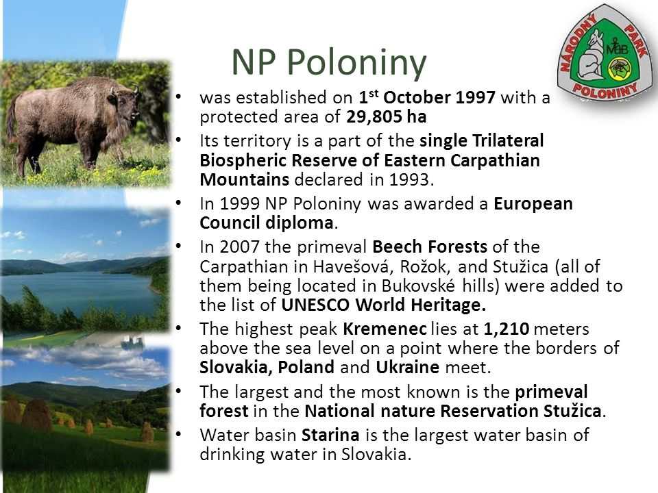 NP Poloniny was established on 1 st October 1997 with a protected area of 29,805 ha Its territory is a part of the single Trilateral Biospheric Reserv