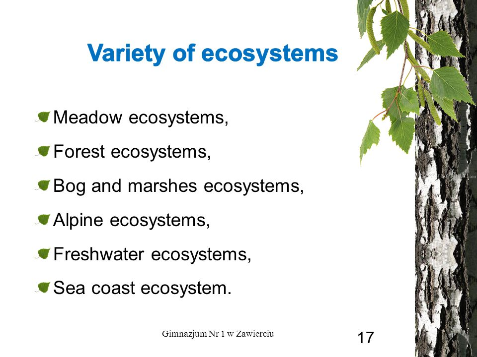 Meadow ecosystems, Forest ecosystems, Bog and marshes ecosystems, Alpine ecosystems, Freshwater ecosystems, Sea coast ecosystem.