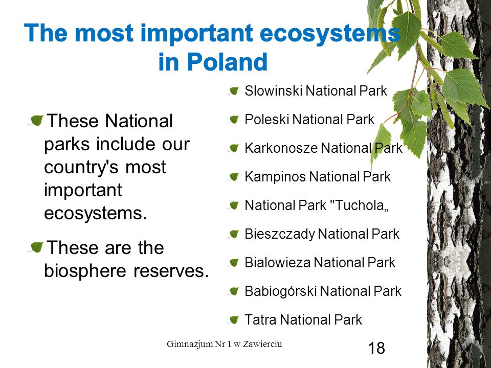 These National parks include our country's most important ecosystems. These are the biosphere reserves. Slowinski National Park Poleski National Park