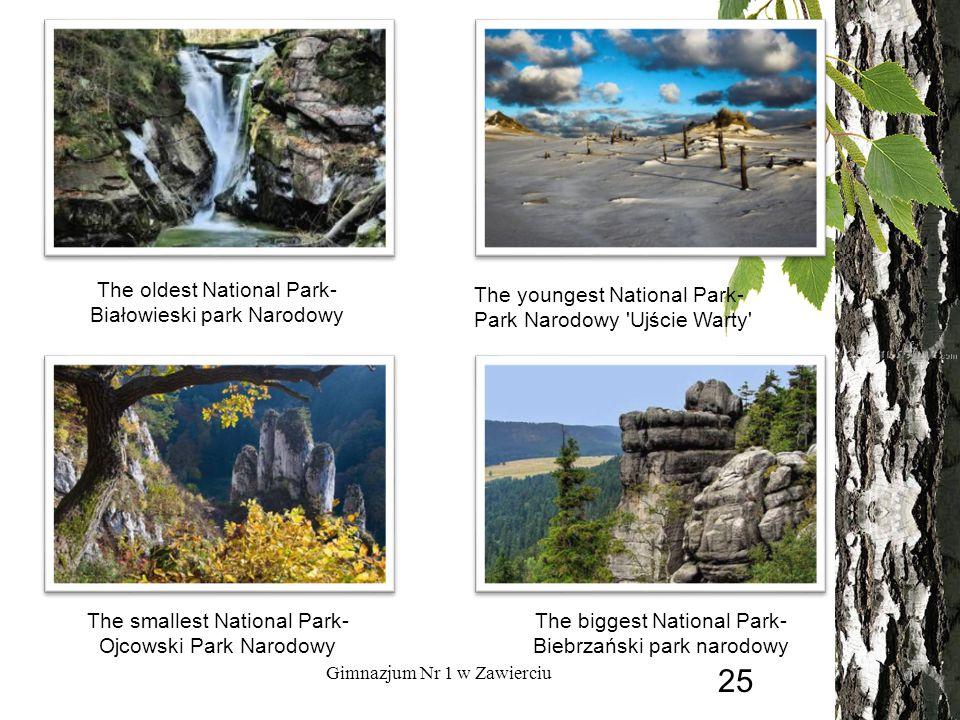 The oldest National Park- Białowieski park Narodowy The youngest National Park- Park Narodowy Ujście Warty The smallest National Park- Ojcowski Park Narodowy The biggest National Park- Biebrzański park narodowy Gimnazjum Nr 1 w Zawierciu 25