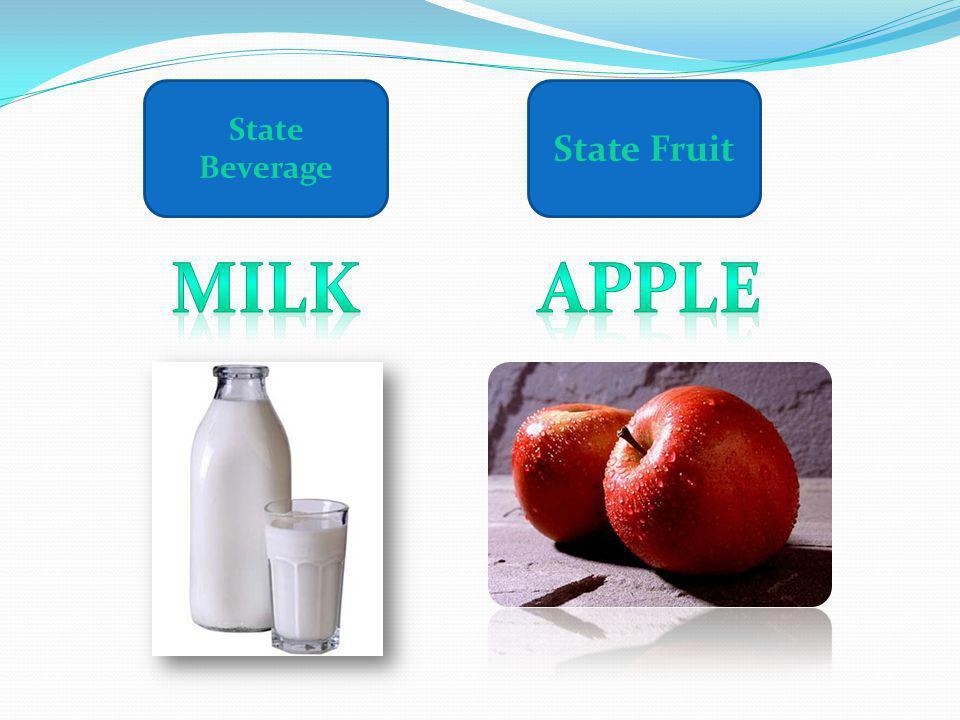 State Beverage State Fruit