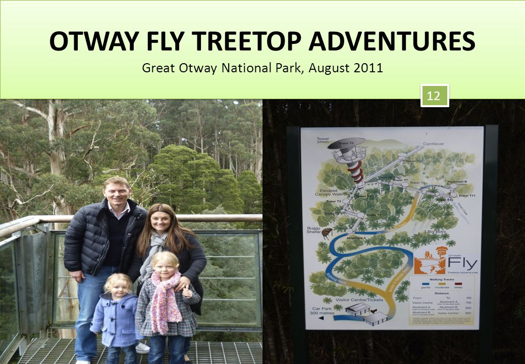 OTWAY FLY TREETOP ADVENTURES Great Otway National Park, August