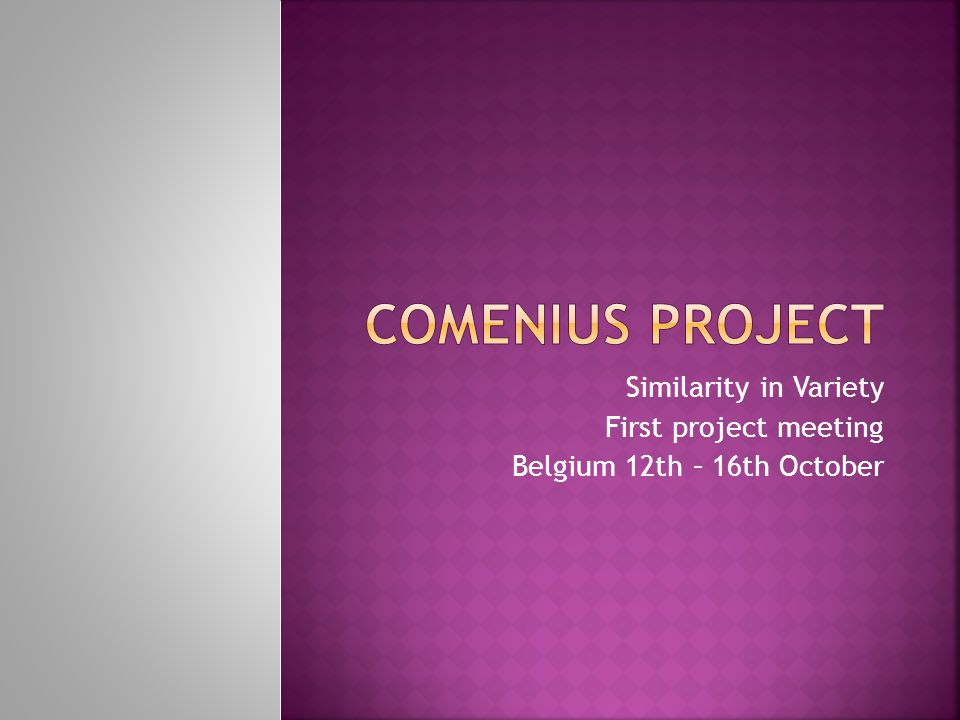 Similarity in Variety First project meeting Belgium 12th – 16th October