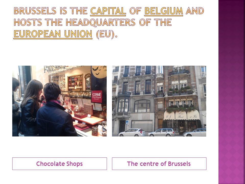 Chocolate ShopsThe centre of Brussels