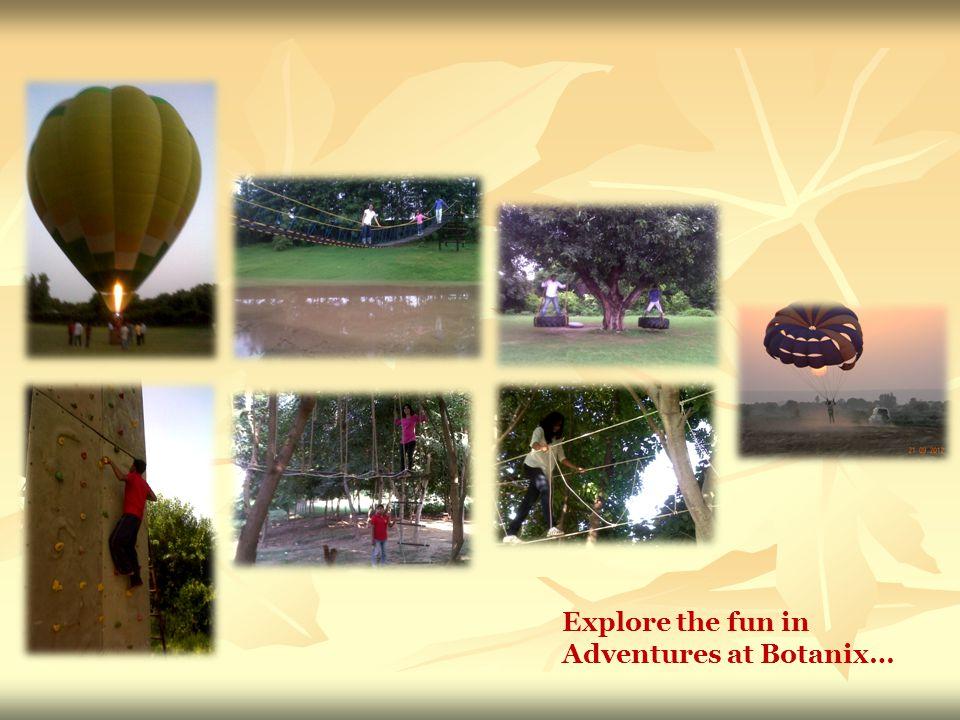 Explore the fun in Adventures at Botanix…