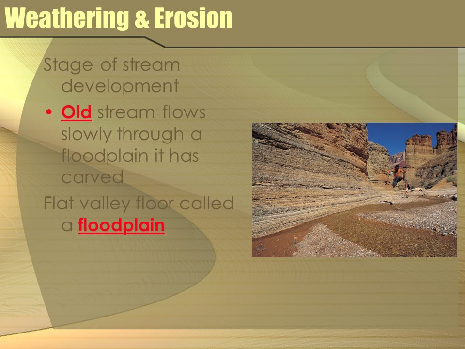 Weathering & Erosion Stage of stream development Old stream flows slowly through a floodplain it has carved Flat valley floor called a floodplain