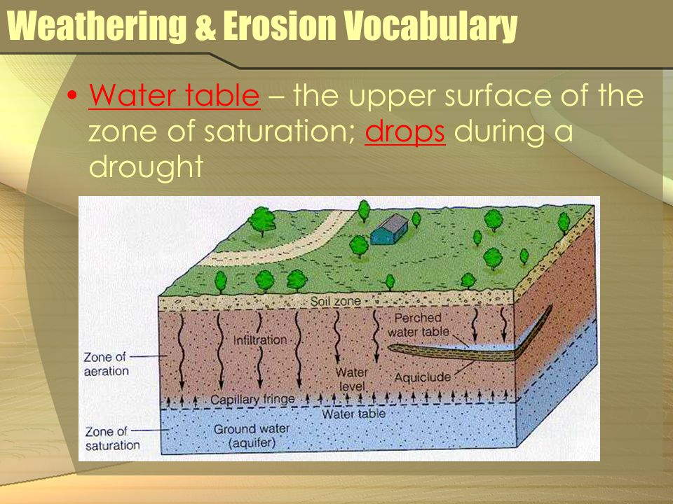 Weathering & Erosion Vocabulary Water table – the upper surface of the zone of saturation; drops during a drought
