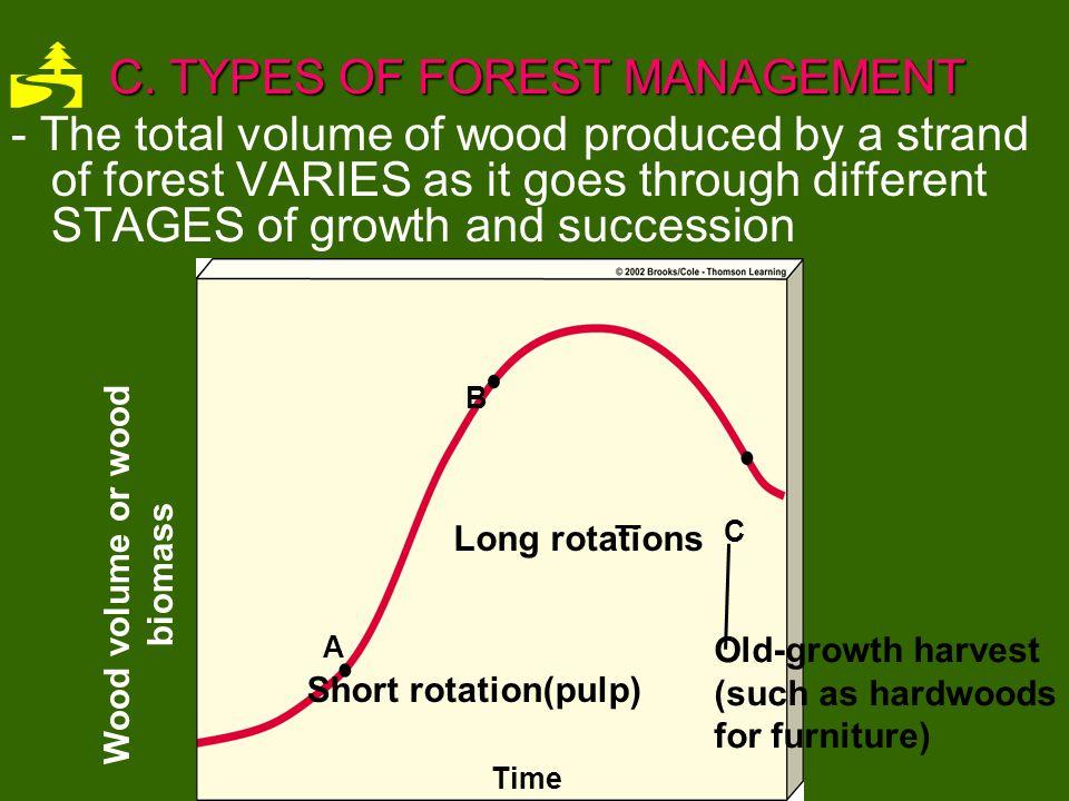 3TREEPLANTATION TREE FARMS 3.